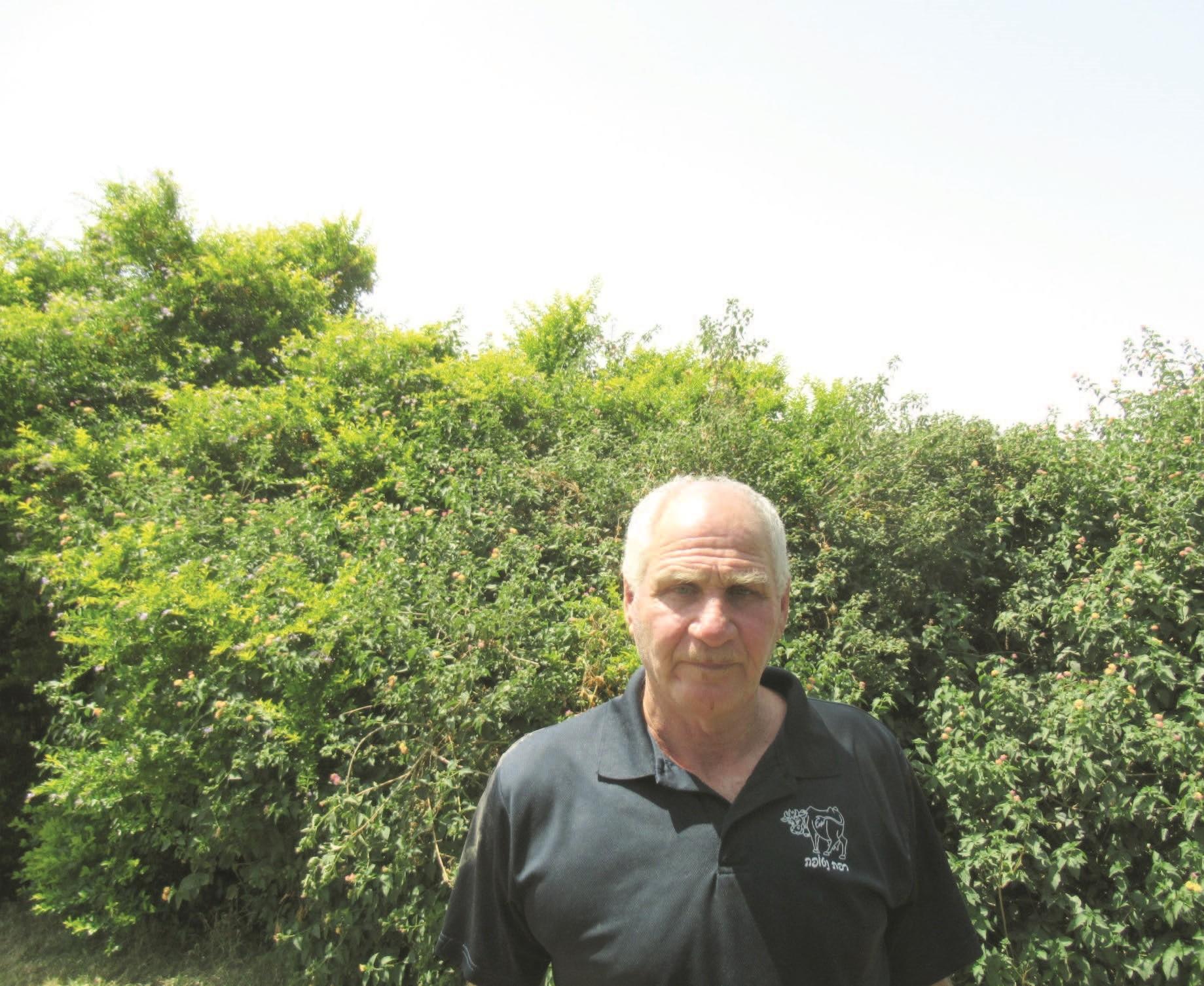 הראל בן ארי – מנהל את הדיר מאז הקמתו