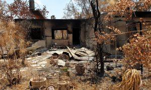 נזקי השריפה בהראל 2