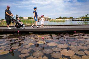 אגם פתח תקוה מקור המים מי באר מזוהמת בניטראט