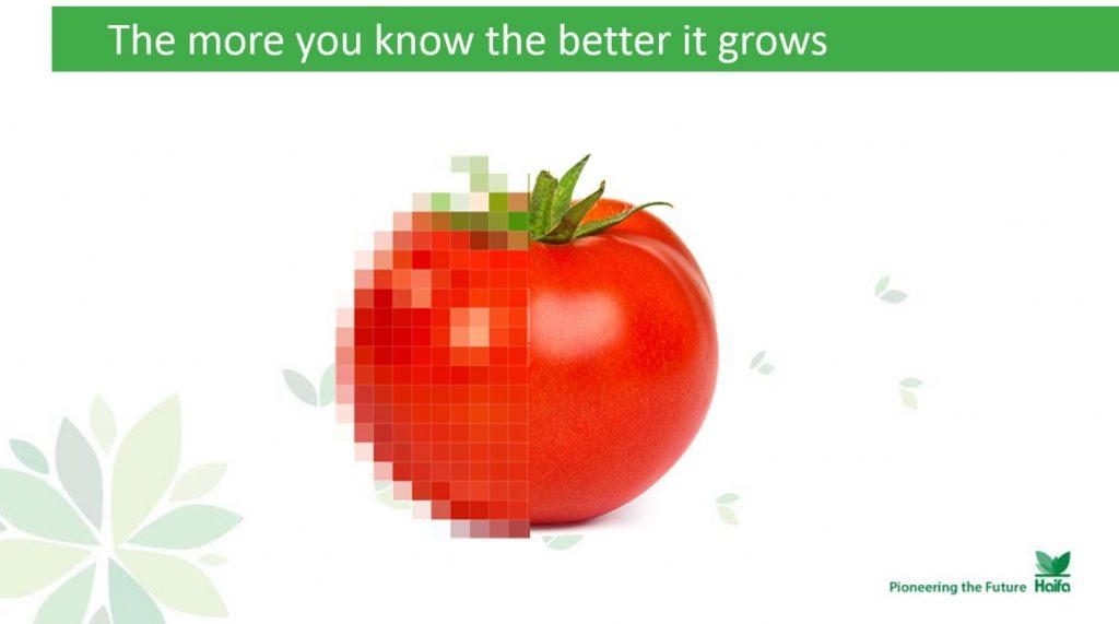 ככל שאתה יודע יותר