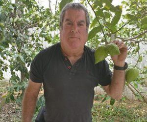רוני לוי