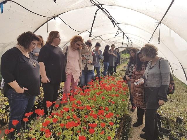 קבוצות מבקרים במשתלת זרעים מציון