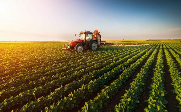 חקלאות בישראל