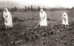 1912 עלמות מקבוצת חנה מייזל קבוצת העלמות בחצר כנרת בעבודת גן הירק