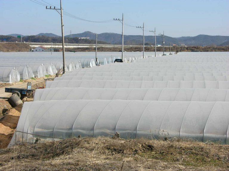 חממות חקלאות
