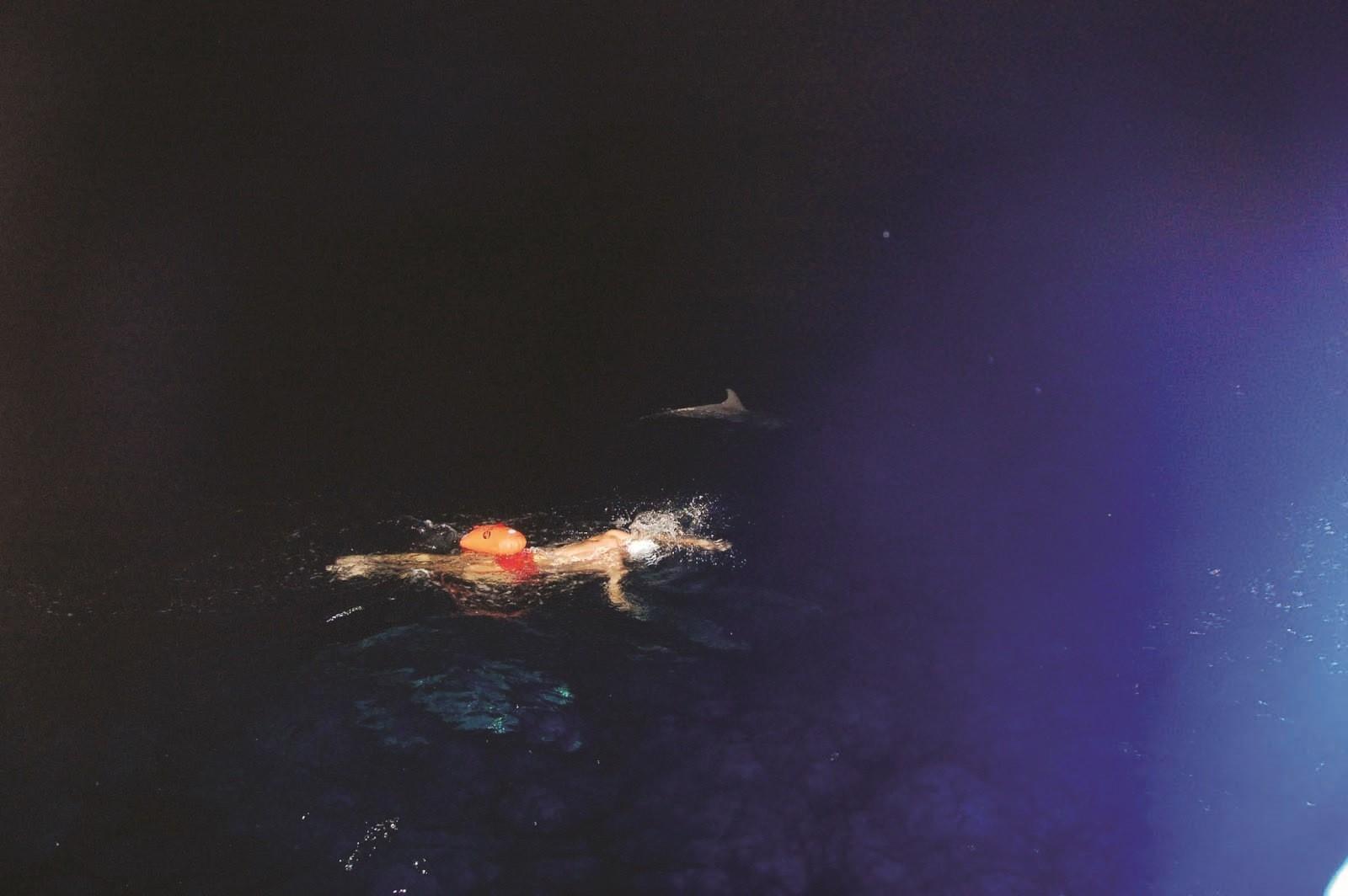 עודד רהב בשחיה עם דולפין