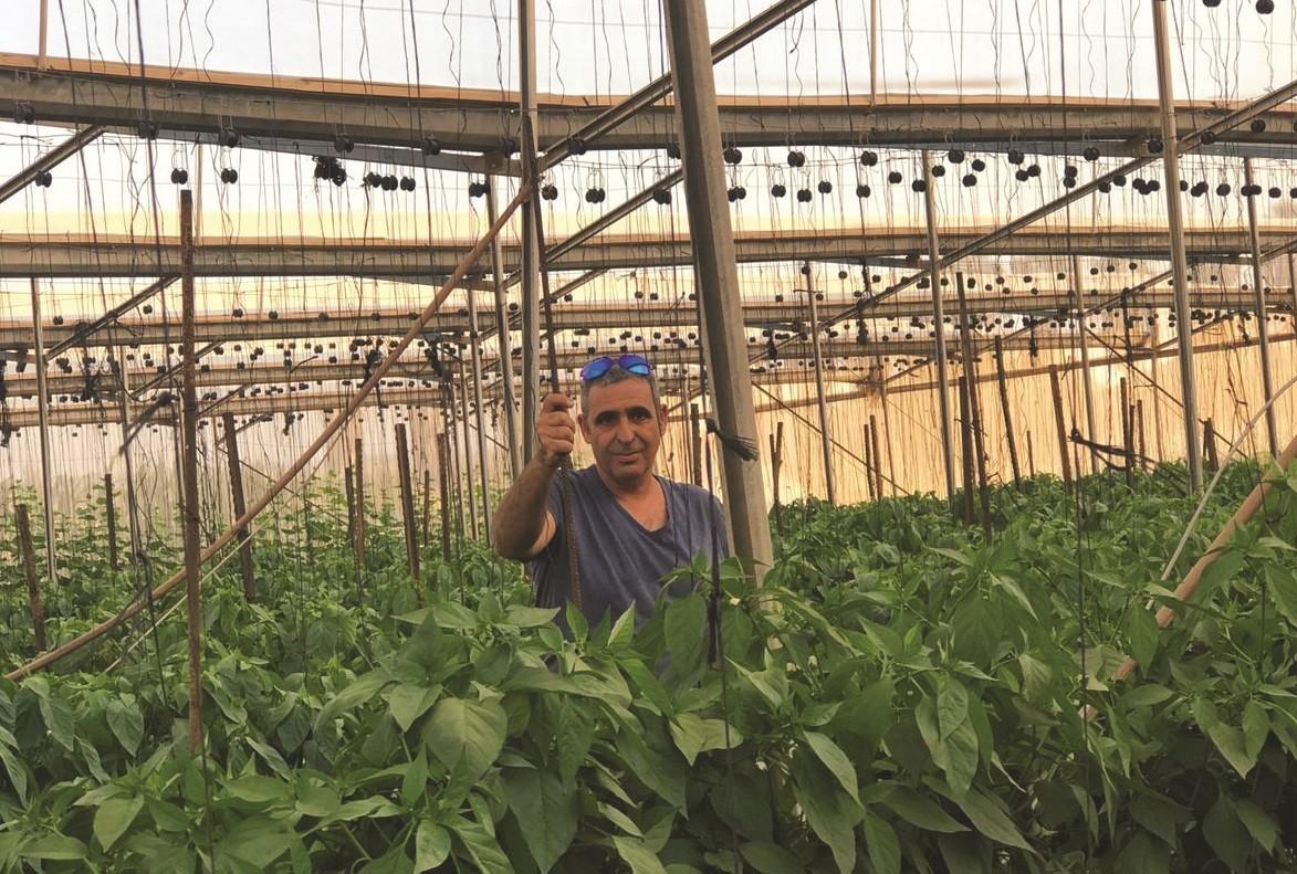 ניב גרשון אבא של שחר. בחקלאות מאז שנולד
