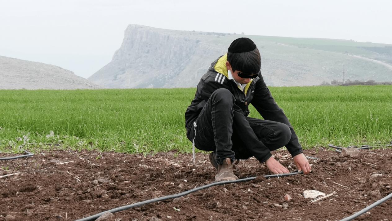 נער עובד בחקלאות על רקע הארבל