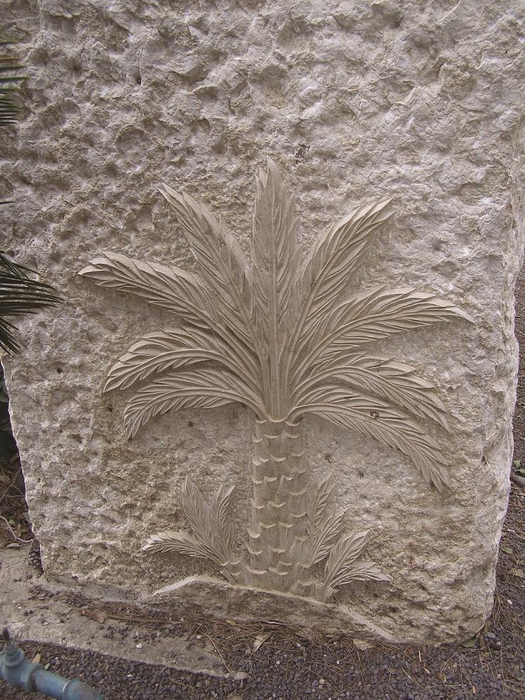 הדקל על קברו של בן ציון ישראלי בכנרת צילום רן בר