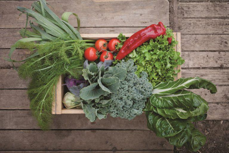 החווה מוכרת ירקות ללקוחות פרטיים בנקודות חלוקה