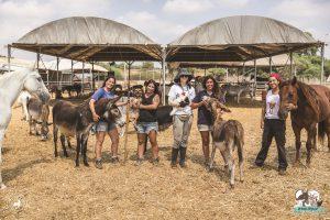 חברי צוות מעמותת להתחיל מחדש עם בעלי החיים המשוקמים