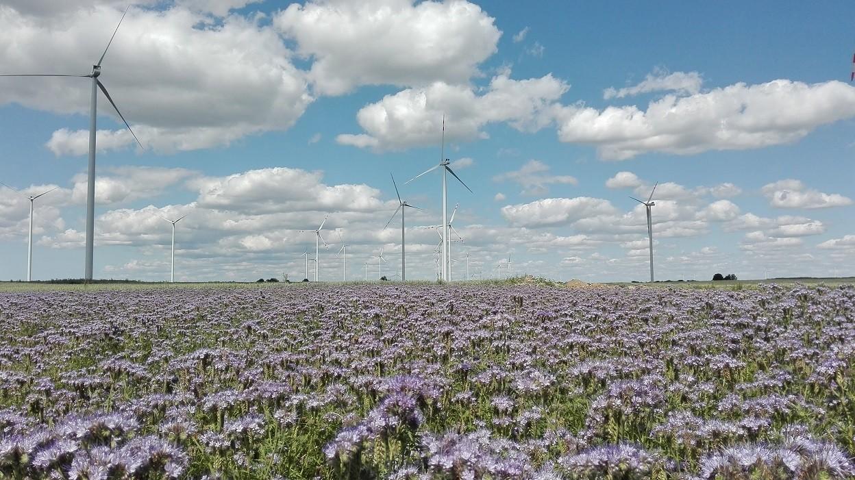 פולין אנרגיקס תחנת הכח השניה בגודלה במדינה
