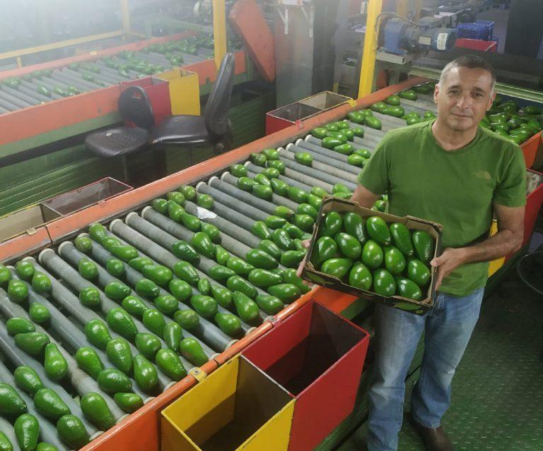 ירון בלחסן מנכל ארגון מגדלי הפירות בישראל