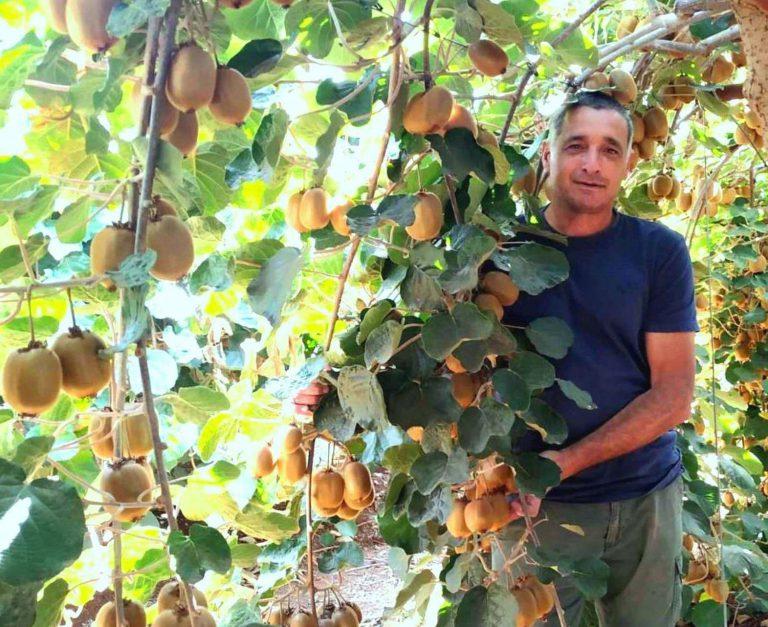 ירון בלחסן מנכל ארגון מגדלי הפירות