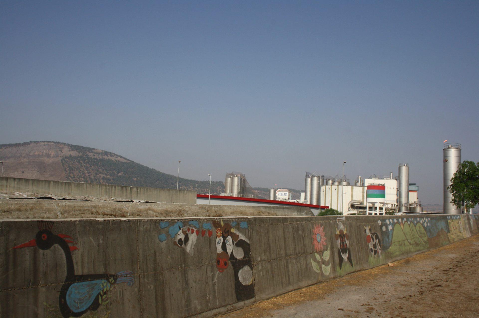 מרכז מזון מילובר תל יוסף עם נופים יפהפיים של מחלבת תל יוסף