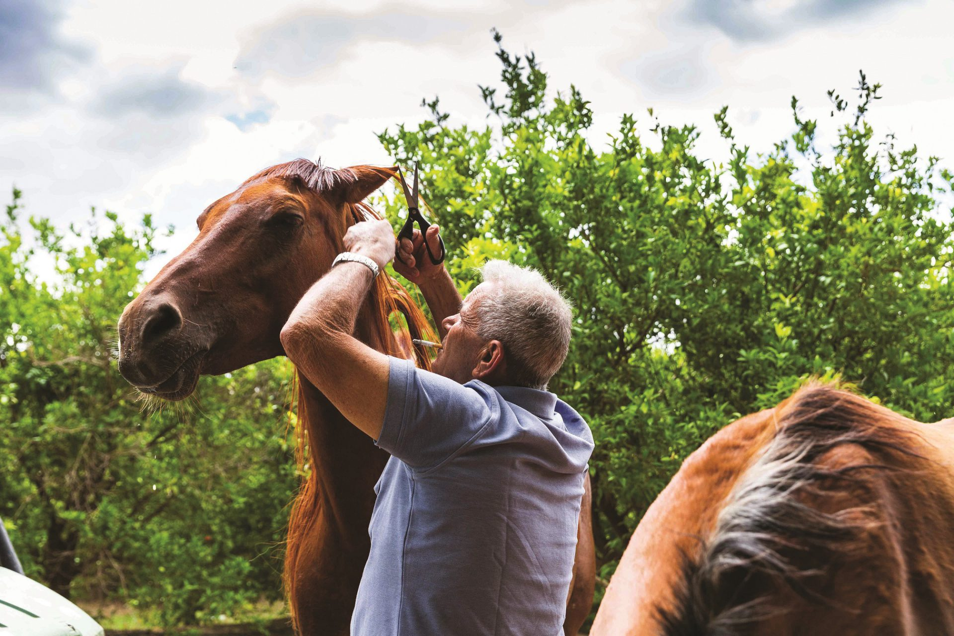 אבי שלמה חיון יליד יבנאל חקלאי בנשמתו צילום אושרי חיון