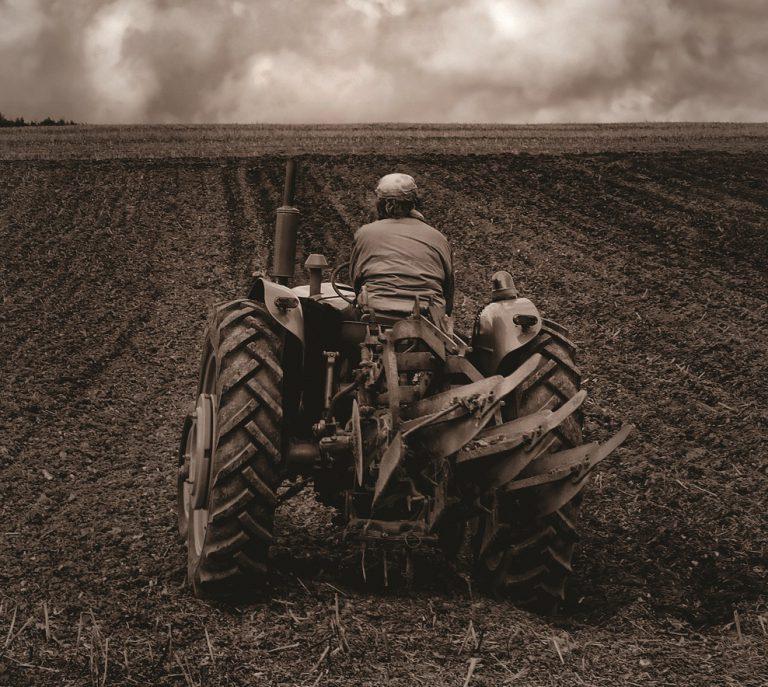 דור ממשיך בחקלאות