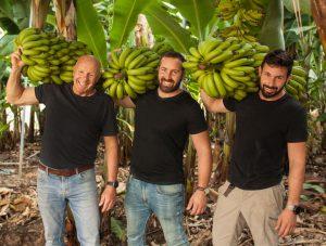 יאיר ברק וישראל אבני מגדלי בננות מושב גבע כרמל צילום מעין עופר