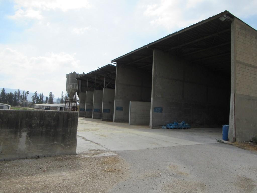 מרכז המזון בדגניה א – גדול ומספק את הצרכים של הרפת