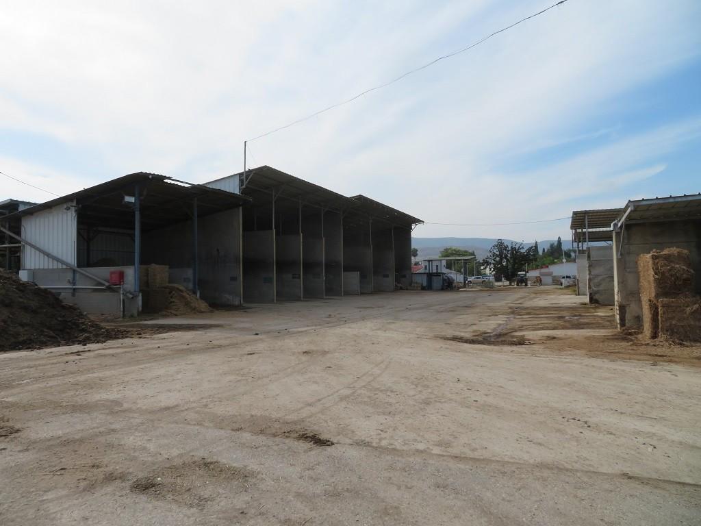 מרכז המזון בדגניה ב שגם משמש כבית הטיפולים של הסלף