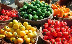 קורונה משבר הקורונה בחקלאות בישראל