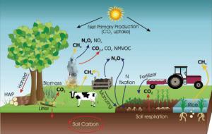 חקלאות והתחממות גלובאלית