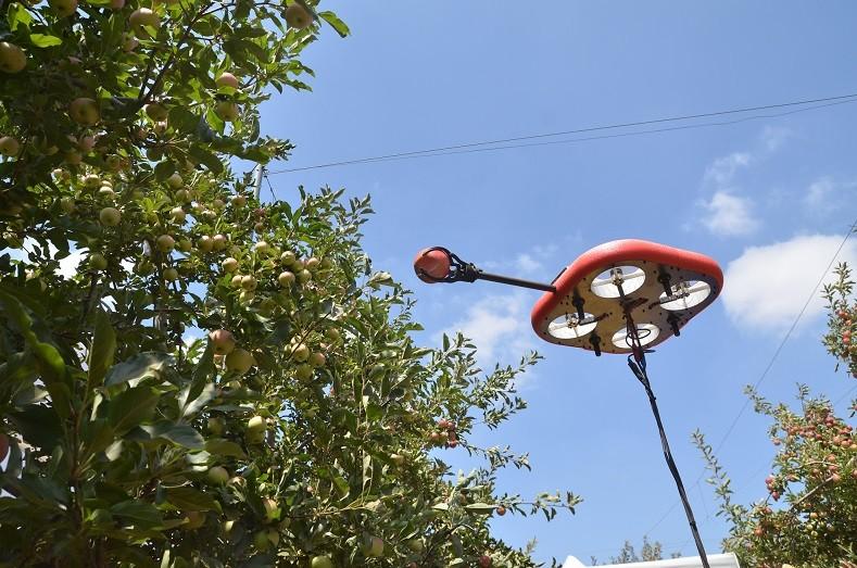 רובוט לקטיף תפוחים