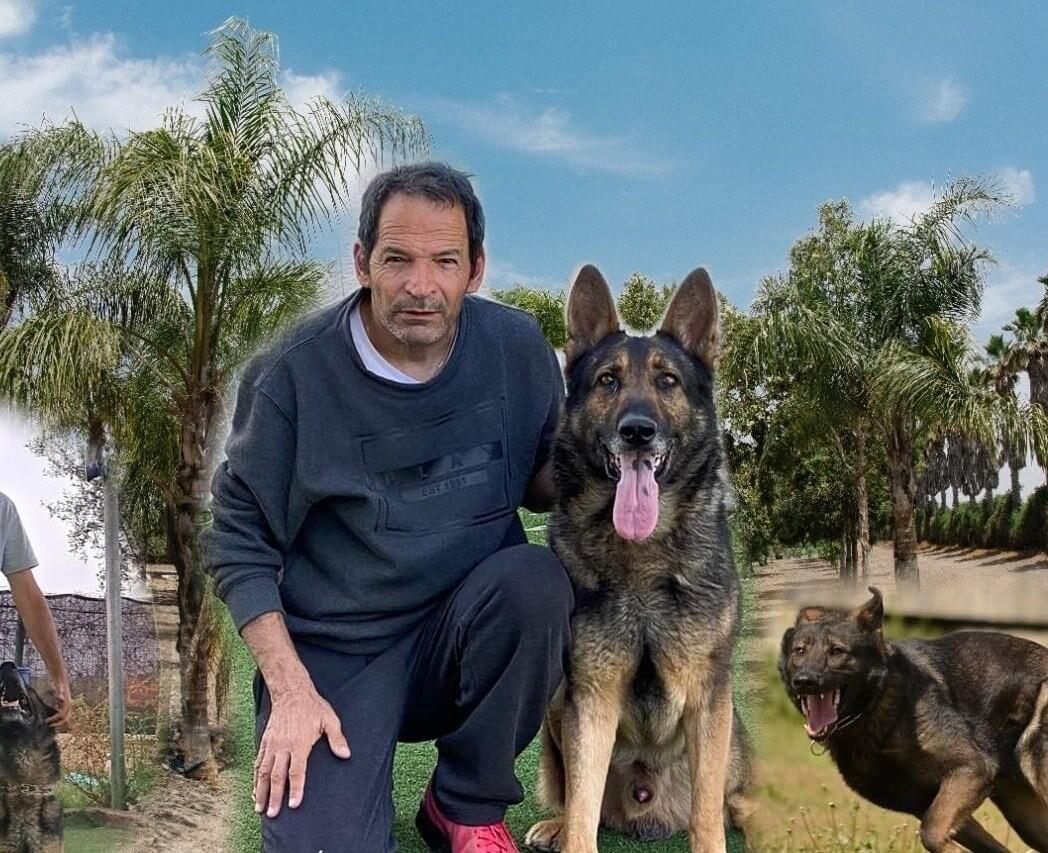 ארי ראבל 30 שנות נסיון אילוף כלבים