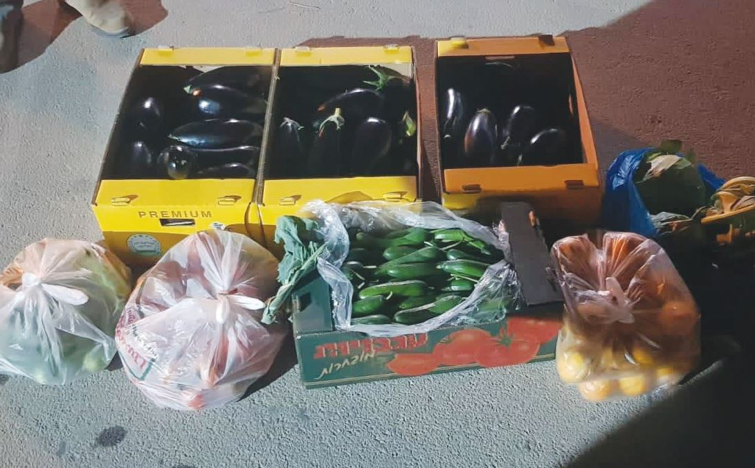 גניבות פרי ממטעי החקלאים
