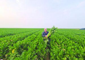 שר החקלאות ופיתוח הכפר