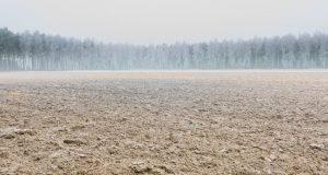 קיימות ומאבק במשבר האקלים