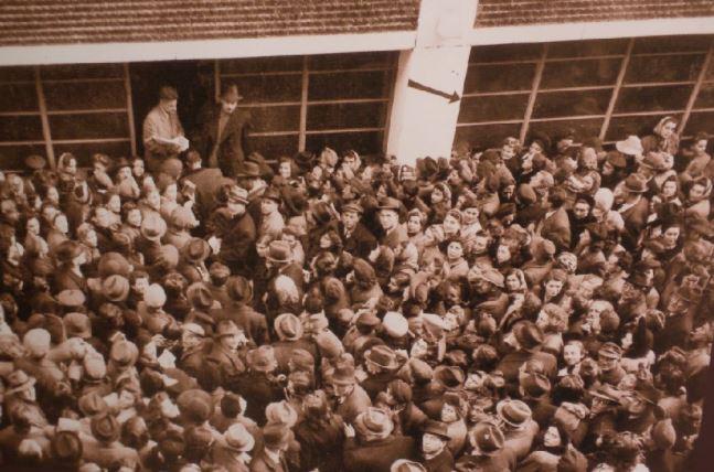 מחתרת התנועות הציוניות בהונגריה