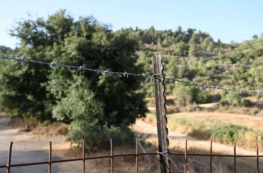 מצלים את הרי ירושלים פגיעה במסדרון האקולוגי צילום רון חביליו