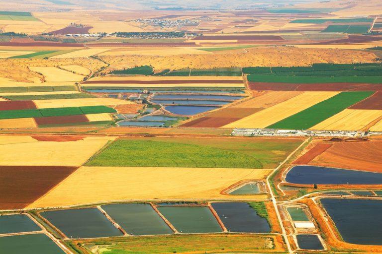 תמיכה ישירה בחקלאות