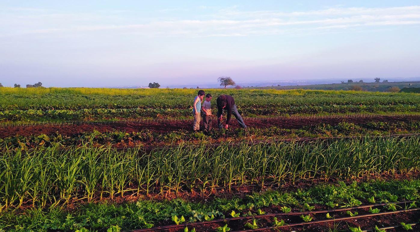 גסטון והילדים במשק החקלאי