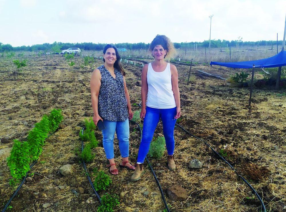 יערה ורעיה בחווה החקלאית